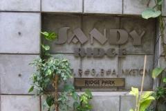 sandy-02